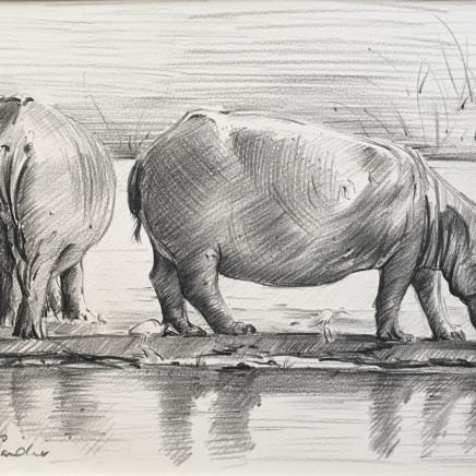 Camilla Gardener - Hippos, 2018