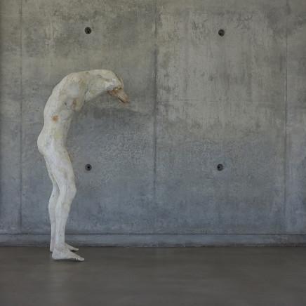 Daniel Blom - PIG, 2017