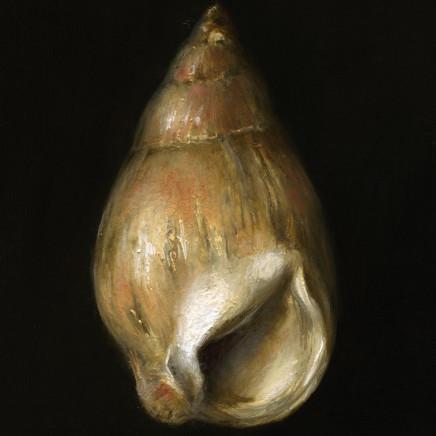 Tanja Moderscheim - Porthmeor Piskie Shell