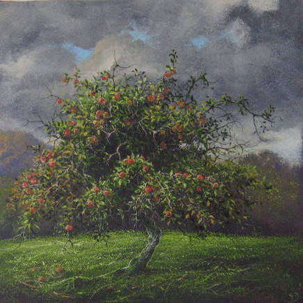 Gerald Dewsbury - Apple Tree II