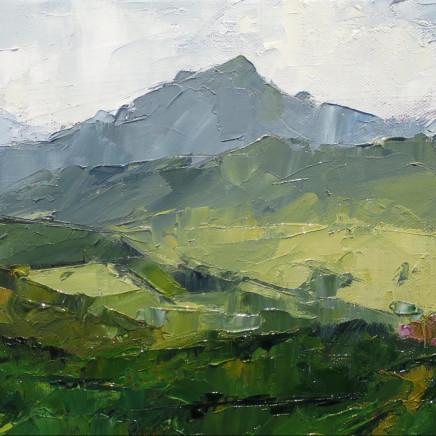 David Grosvenor - Snowdon from Beddgelert Forest