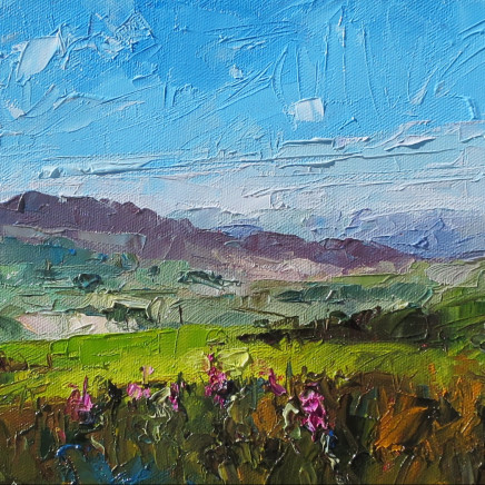 David Grosvenor - Looking South from above Trawsfynydd
