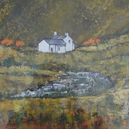 Lyndon Thomas - Near Capel Curig