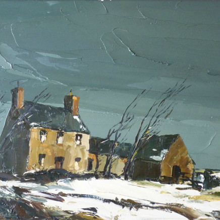 Donald McIntyre - Winter Storm, Anglesey