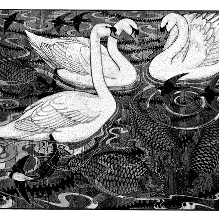 Colin See-Paynton - Mute Swan and Carp II