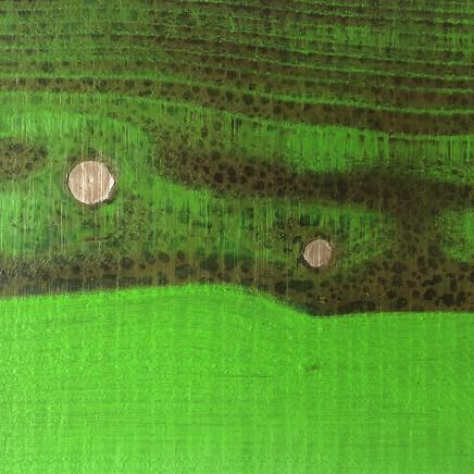 Robert Pitwell - Rain on Larches