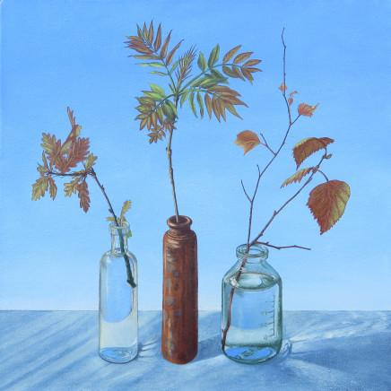 Kim Dewsbury - Oak, Ash, Birch. Early Spring, Bogwood