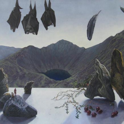 Kim Dewsbury - Cader Idris, up from Dol y Cae