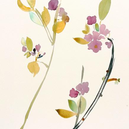 Susan Kane - Blossom Time