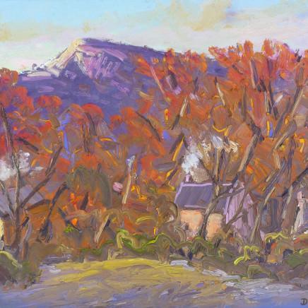 David Lloyd Griffith - Houses, Rhyd y Foel - Autumn