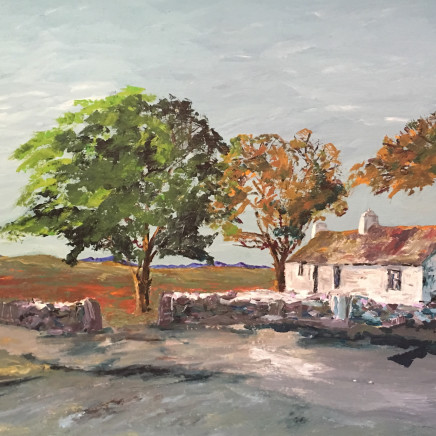 Sion McIntyre - Rose Cottage, Ynys Mon
