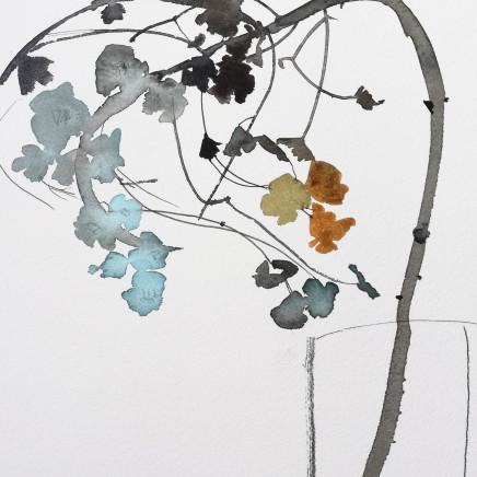 Susan Kane - Dried Euphorbia