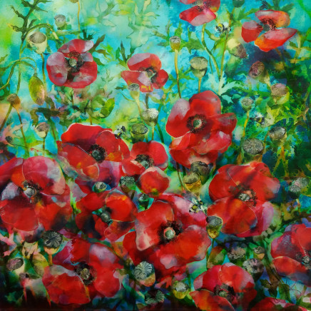 Ann Bridges - The Poppy Field