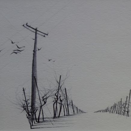 Dewi Tudur - Gwinllan mewn Eira / Vineyard in Snow