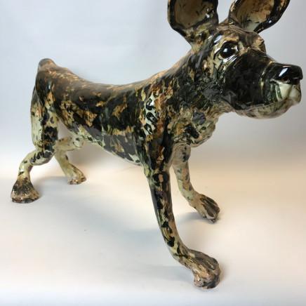 Willie Carter - African Wild Dog