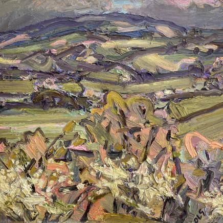 David Lloyd Griffith - A day in April - Blackthorn Blossom (Rhyd y Foel)