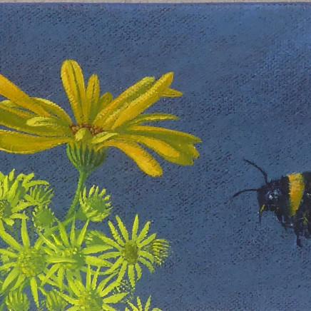 Kim Dewsbury - Garden Life in Yellow