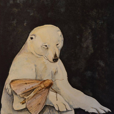 Bear and Moth, a Curious Love Story