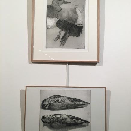 """""""Ouette d'Egypte"""", 2015 et """"Deux Faucons hobereaux"""", 2007-2008."""
