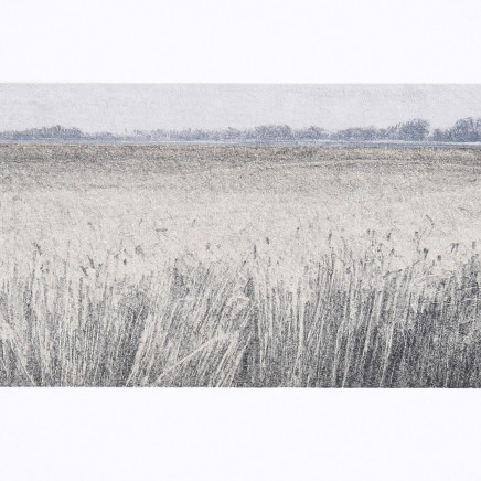 Farhad Ostovani, Horizon, blés, 2010-2014