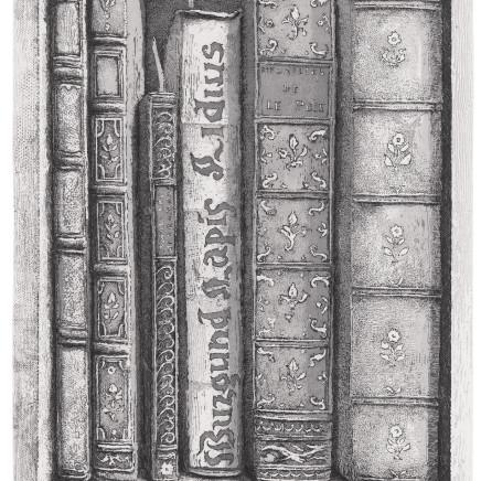 Érik Desmazières, Fragment de la Bibliothèque de Sir Thomas B. (I), 2009