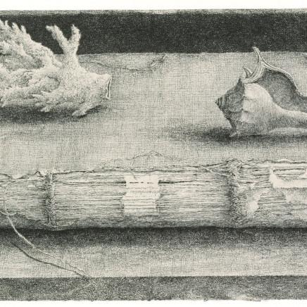 Érik Desmazières, Registre & coquillages , 2002