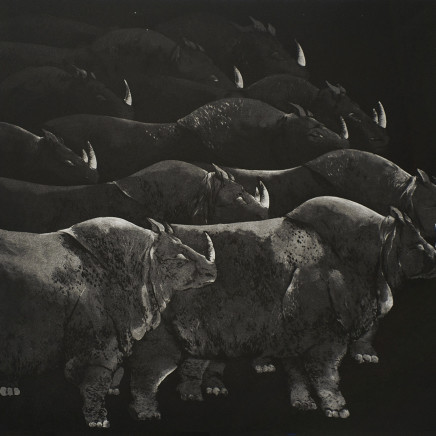 Marjan Seyedin, Troupeau de rhinocéros, 2012
