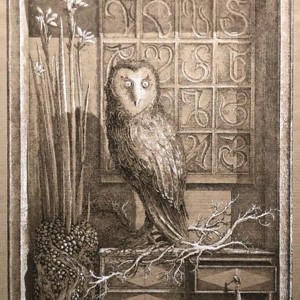 Érik Desmazières, L'Oiseau de Minerve (épreuve rehaussée), 2012