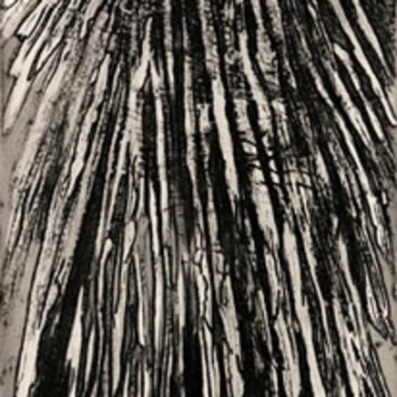Astrid de La Forest, Ciel d'orage, 2005