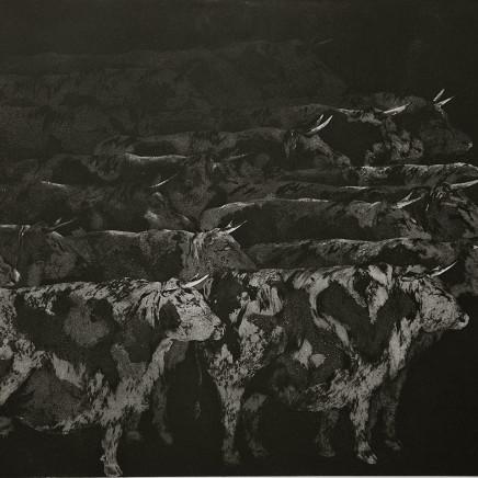 Marjan Seyedin, Troupeau de vaches, 2012