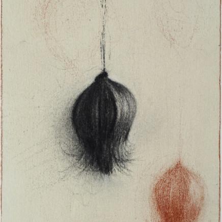 Nicolas Poignon, Fruit exotique VIII, 2017