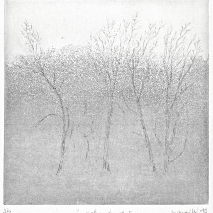 Maurice Maillard, La Valse du vent, 2019