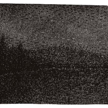 Nicolas Poignon, Eau - Reflet, 2000