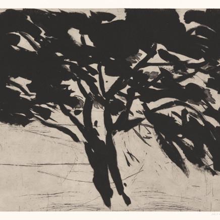 Astrid de La Forest, Le Grand chêne, 2014
