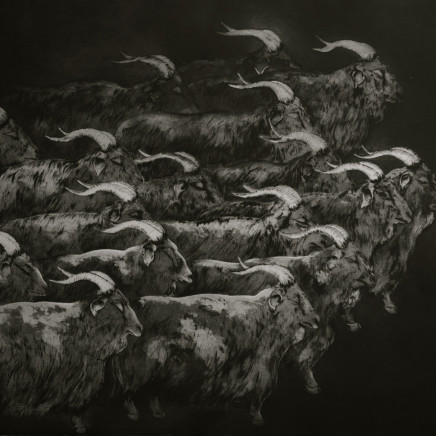 Marjan Seyedin, Troupeau de chèvres, 2012