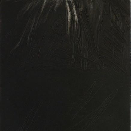 Astrid de La Forest, Montagne noire, 2005