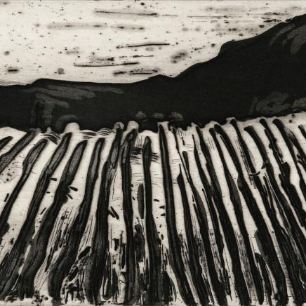 Astrid de La Forest, Colline, 2005