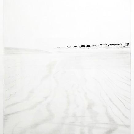 """Maurice Maillard, """"S'en retourner vers le Comté des sables"""", 2019"""