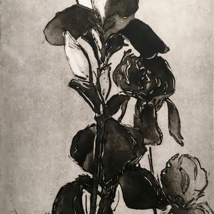 Astrid de La Forest, Iris II, 2007
