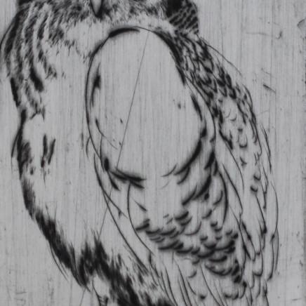 Marjan Seyedin, Oiseau 8, 2011