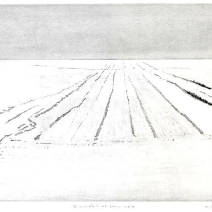 Maurice Maillard, Immobile et sans voix, 2013