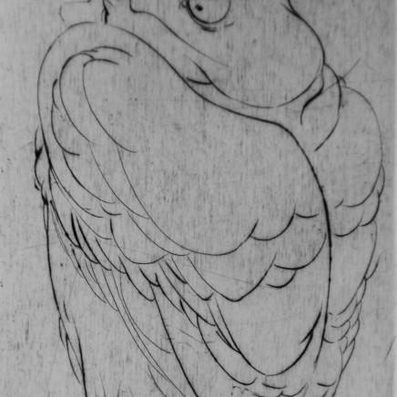 Marjan Seyedin, Oiseau 14, 2011