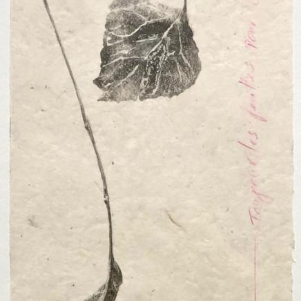 Farhad Ostovani, Toujours les feuilles pour Goldberg, 2014