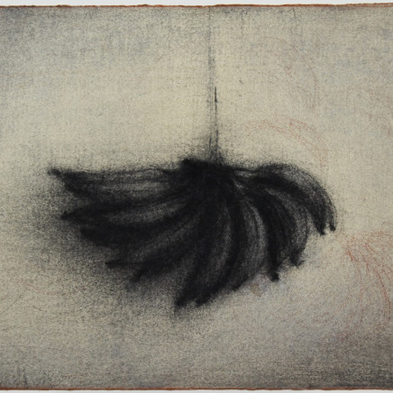 Nicolas Poignon, Fruit exotique V, 2017