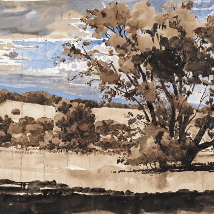 Charles-Élie Delprat, Chêne vert, Casa de Campo, 2019