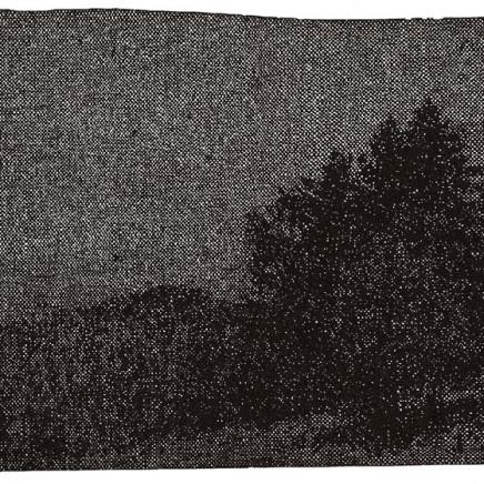 Nicolas Poignon, Paysage avec sapins, 1998