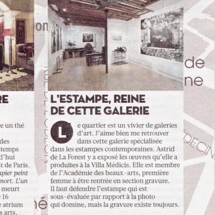 Paragraphe sur la Galerie Documents 15.