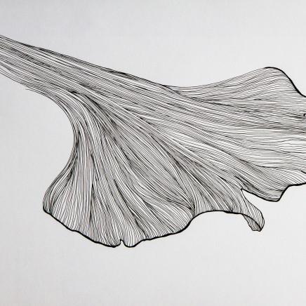 Lucy Ribeiro - Hidden Form I, 2014