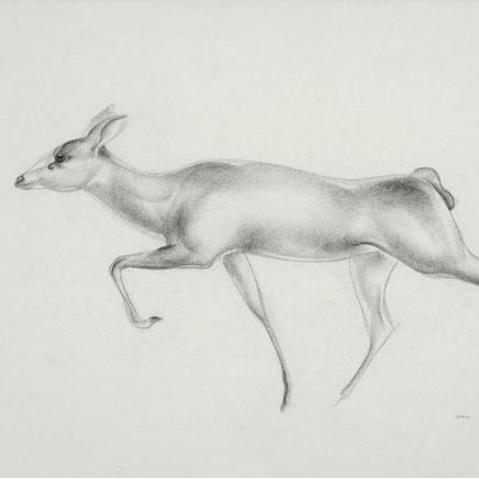 John Skeaping RA - Antelope study