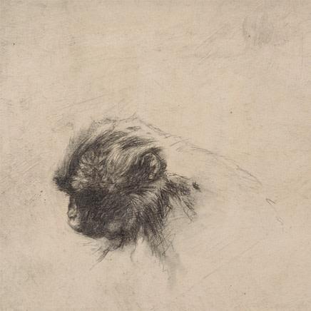 Vicky White - Monkey